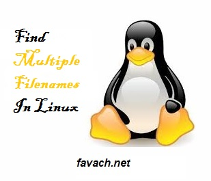 find multiple filename