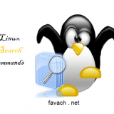 search files and dir in linux
